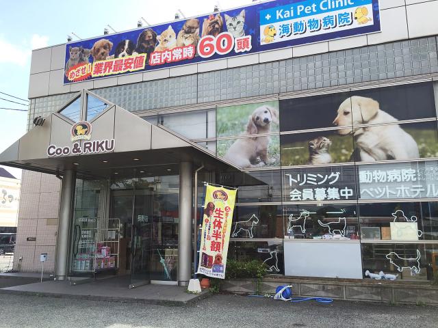 長野篠ノ井店 | 店舗情報 | ペットワールド アミーゴ