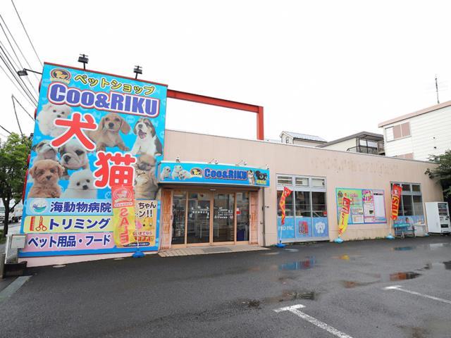 ショップ ペット 神奈川 県