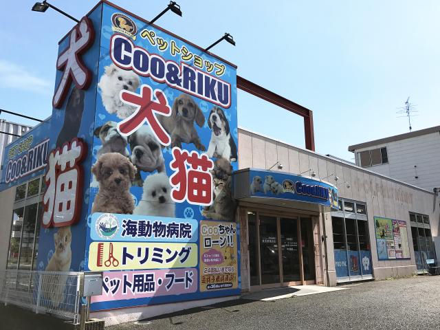 横浜港南台店