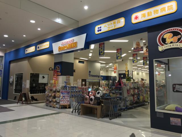 イオンモール新発田店