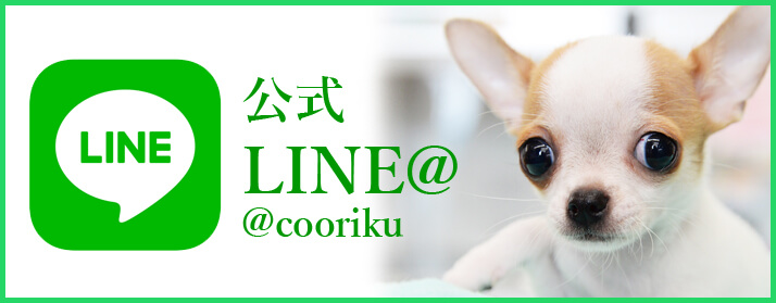 Coo&RIKU公式LINE@
